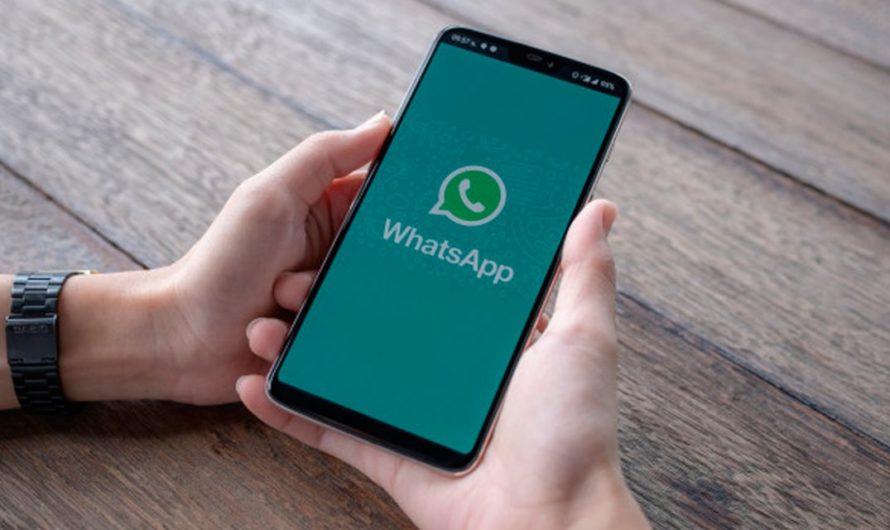 Cómo descargar los mejores stickers en Whatsapp para San Valentín