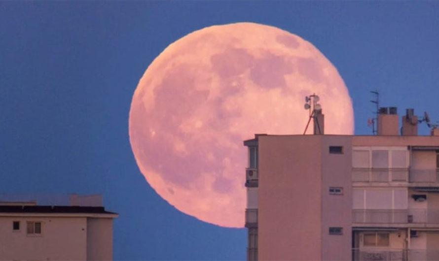 Para romper la monotonía de la cuarentena llega la Superluna Rosa