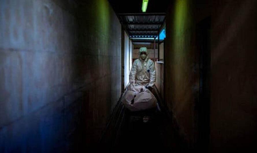 En Ushuaia acumulan cadáveres para cremar en un galpón sin refrigeración ni ventilación desde marzo de 2020