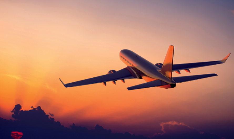 ¿Zombies? Dos mujeres perdieron el control y mordieron a un piloto de avión