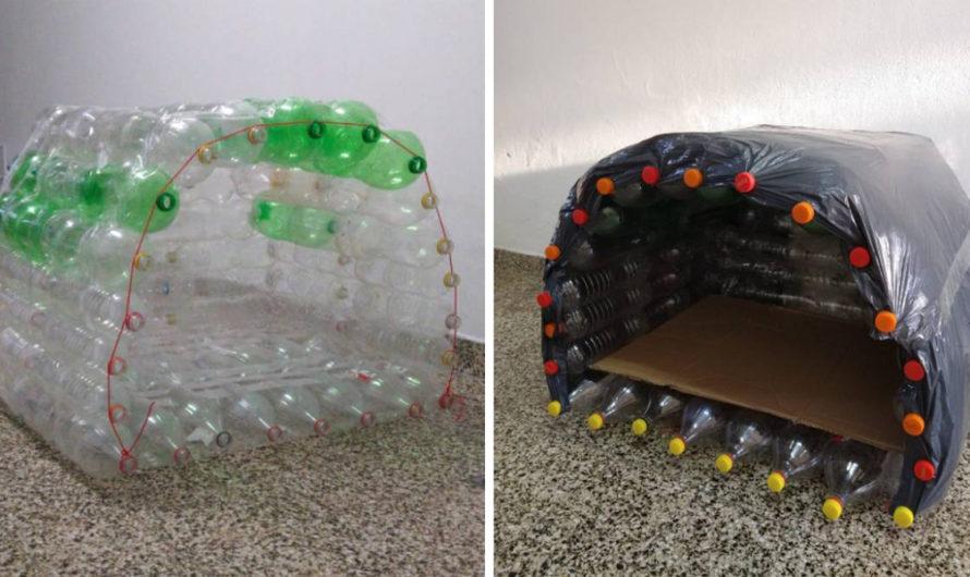 Una rosarina recicla botellas para armar cuchas para animales callejeros y donarlas