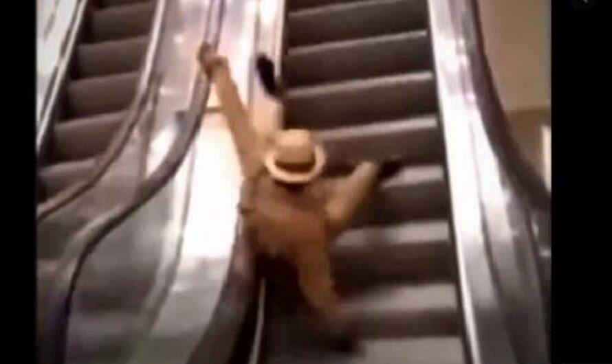Instalaron las primeras escaleras mecánicas en Camerún y desde ahí, las caídas no pararon: videos