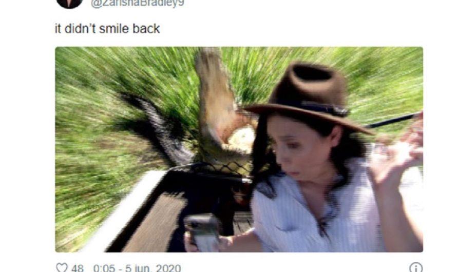 [QUÉ JULEPE] Quiso sacarse una selfie con un cocodrilo y vio pasar toda su vida en un segundo