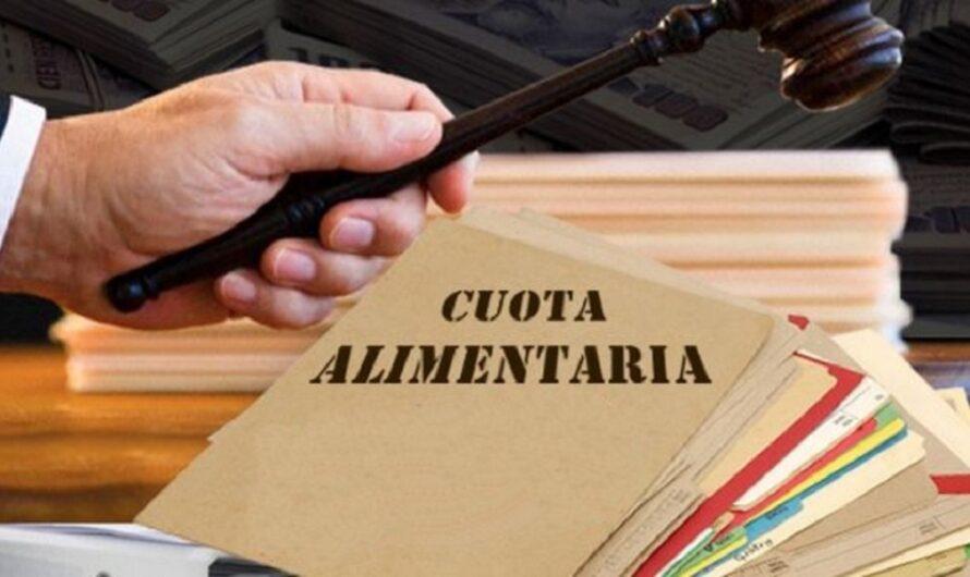 Media sanción al proyecto de actualización inmediata y acordada de las cuotas alimentarias