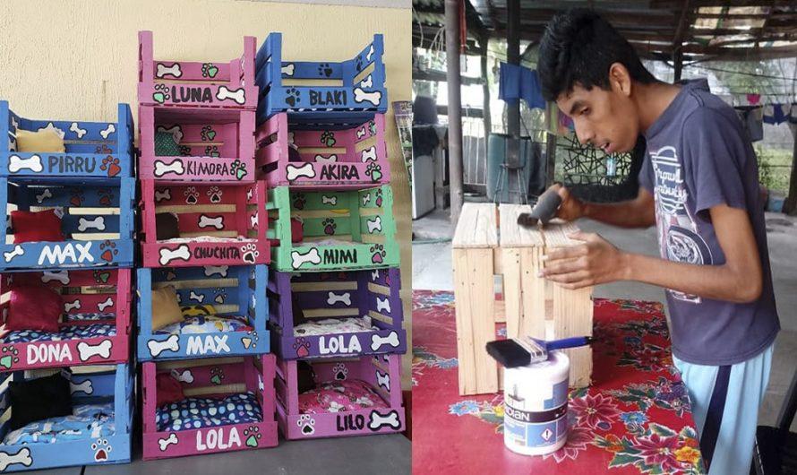 Joven con discapacidad conquista las redes al crear camas para perros y gatos callejeros