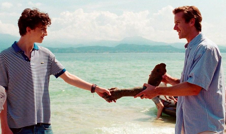 "Luca Guadagnino confirmó las secuela de ""Call me by your name"""