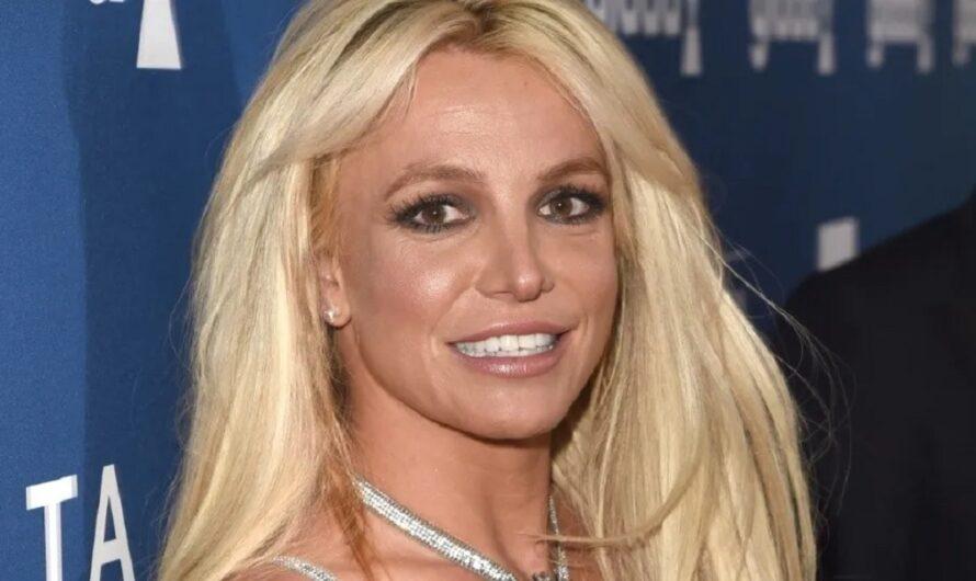 El sensual topless de Britney Spears en medio de la batalla legal contra su padre