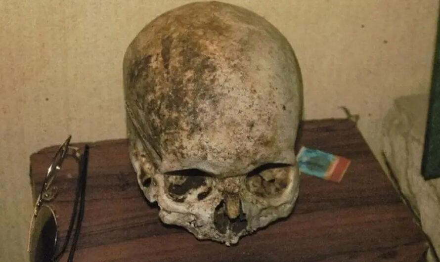 Halloween: Una familia usó como adorno un cráneo de un desaparecido
