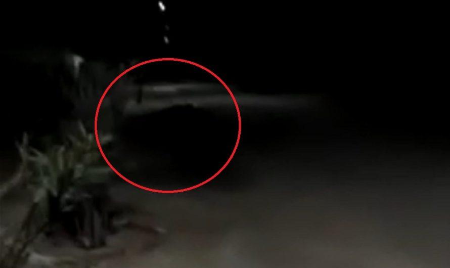 Para el susto: vecinos de Lugones aseguran haber filmado al Almamula