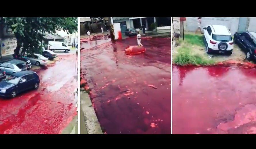 DE TERROR: un barrio se tiñó completamente de sangre