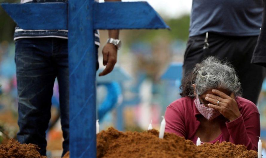 La peor cara de la pandemia: talaron un bosque entero para abrir cientos de tumbas