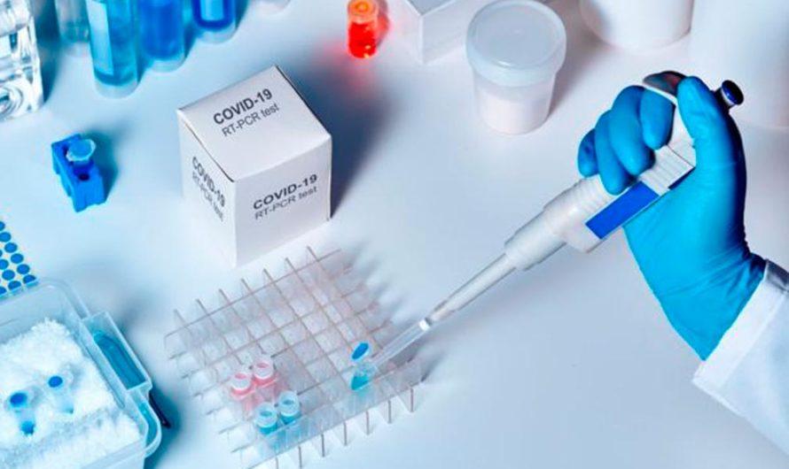 Un grupo de científicos logró demostrar el origen natural del virus que causa covid-19: «No es una creación de laboratorio»