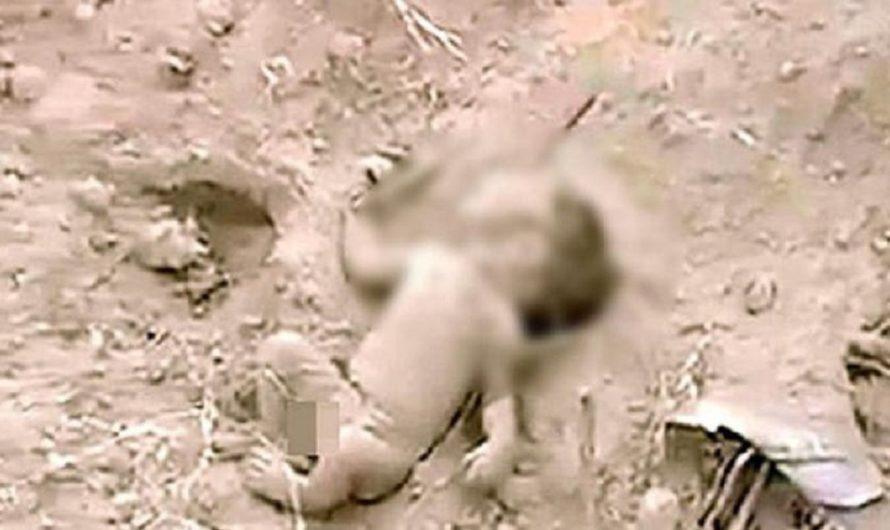 Impactante video: así fue el rescate de un recién nacido que fue enterrado vivo en India